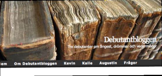 Debutantbloggen januari 2009